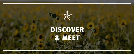Discover and Meet